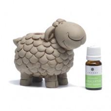 Pirts aitiņa + aromāts 10 ml